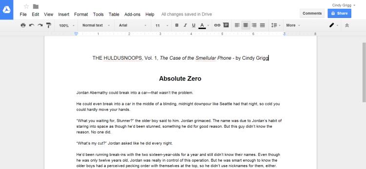 Google Docs Screenshot HulduSnoops
