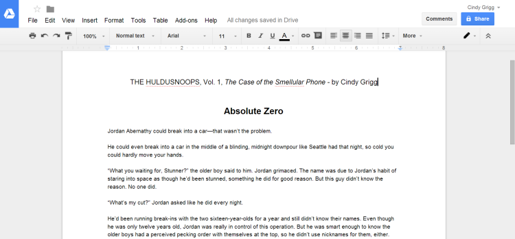 Google Docs Screenshot HulduSnoops